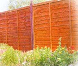 Fencing Panels Dumfries And Galloway Fence Panel